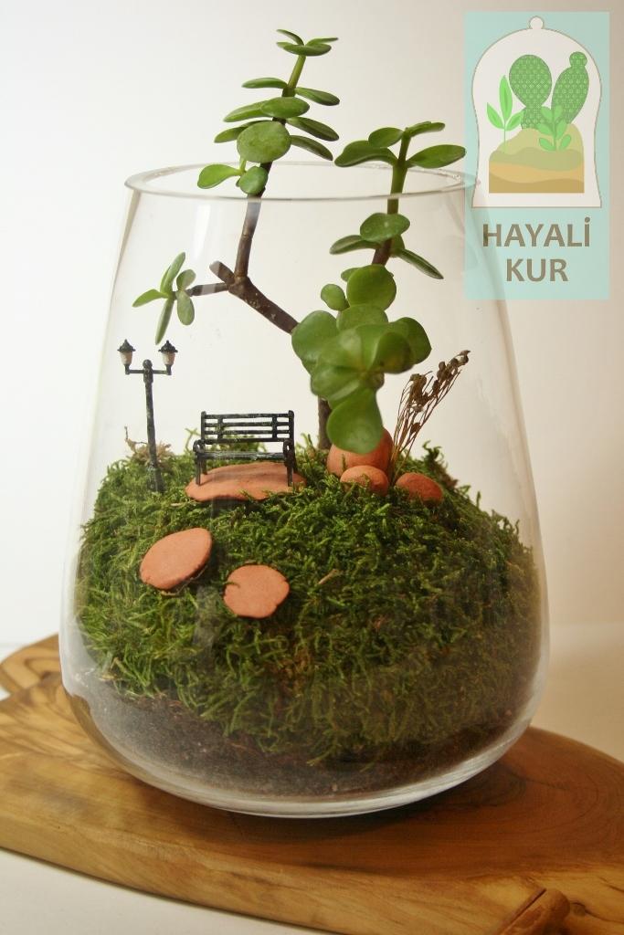 Minyatür Bahçe Nasıl Yapılır Izle Minyatür Bahçe Hayali Kur
