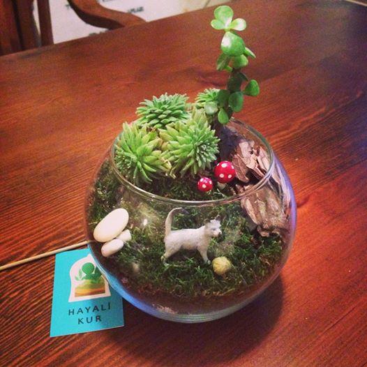Anneye Hediye Kedili Minyatür Bahçe Minyatür Bahçe Hayali Kur